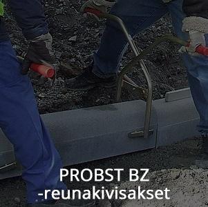 Probst_BZ-reunakivisakset.jpg